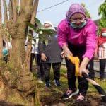 """Pemkab Purwakarta Gelar Mitembeyan Tanam """"Pohon Lame"""" Dalam Peringati Hari Tanam Pohon Sedunia"""