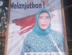 Istri Wabup H Aming Berencana Ikut Pilkades Serentak, Fenomena Apa?