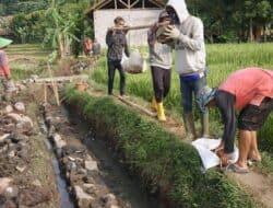 Pembangunan Saluran Irigasi Tercier Libatkan Tenaga Swadaya